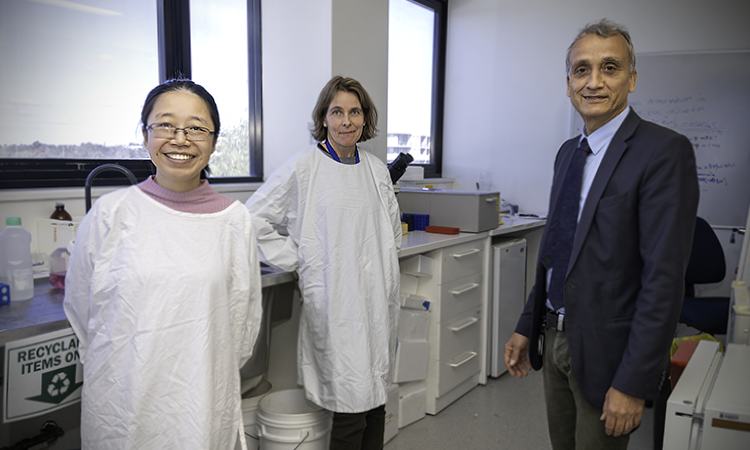 Phyllis Hu, Brigitte Nanan and Ralph Nanan in lab
